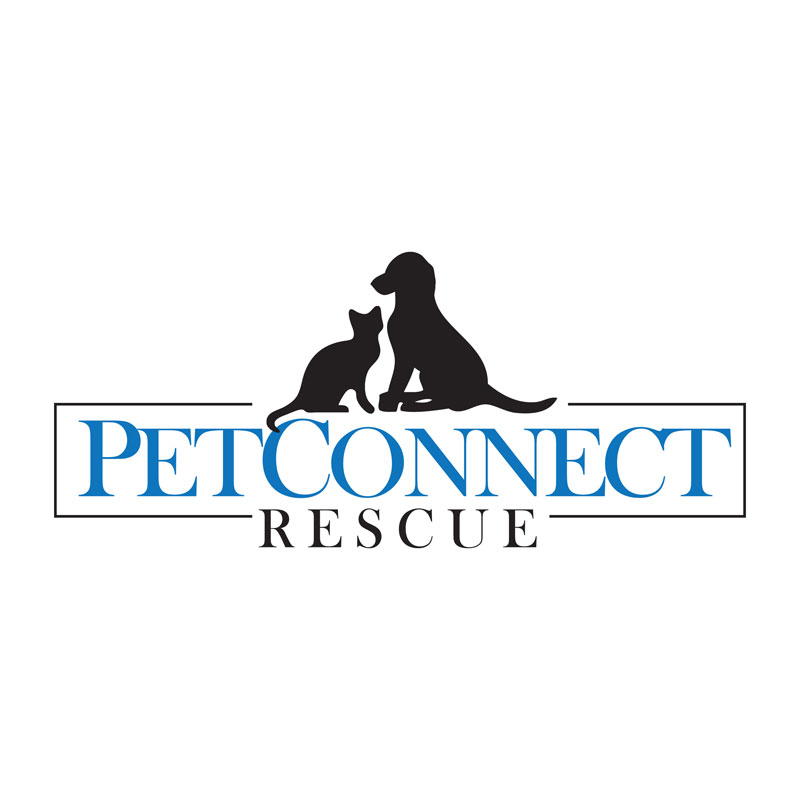 PetConnect Rescue - Get ready to find your new family member!